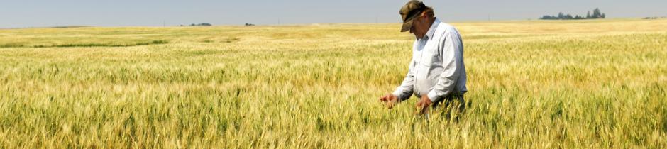 eurotechnik, solution stockage agriculture, échauffour